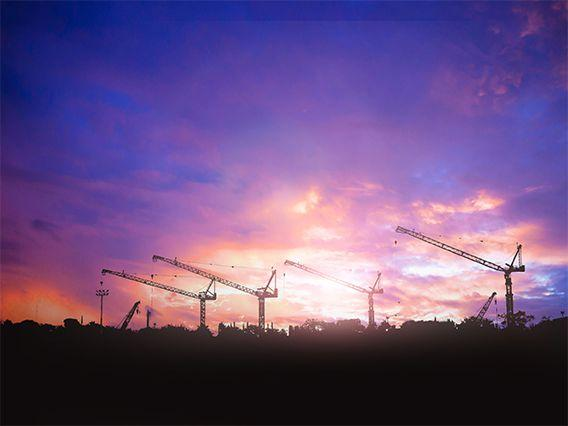 Far Away Cranes at Dusk